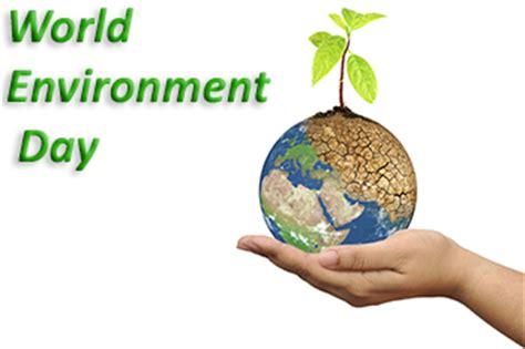 Healthy environment essay pdf